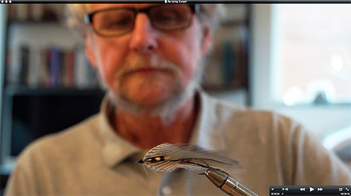 gray ghost fly tying 3